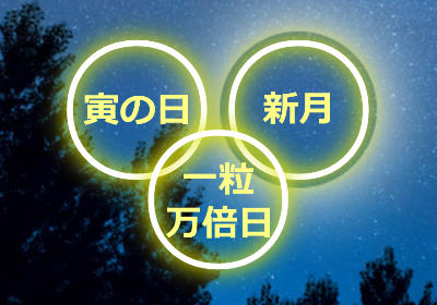 金運アップの大開運日2017年3月28日は「寅の日」「新月」「一粒万倍日」の重なるスペシャルデー